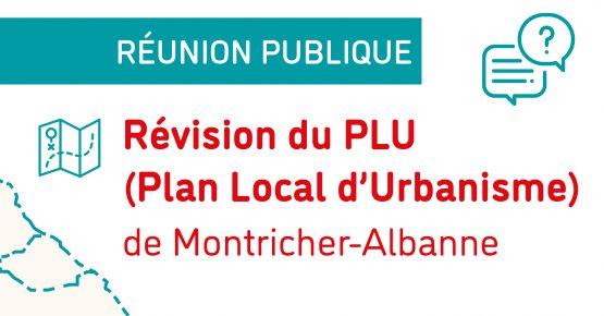 Réunion publique PLU Montricher Web